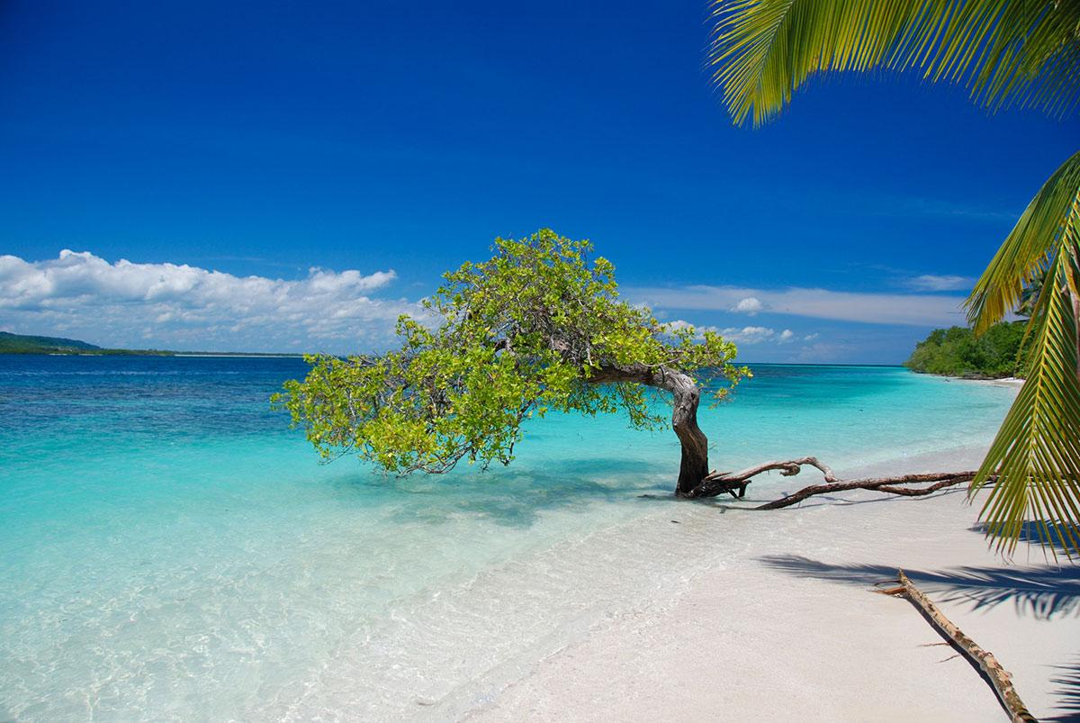 Лучшие пляжи в Венесуэлу, Туры в Венесуэлу