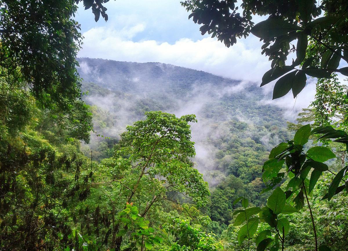 Национальный Парк Дарьен, Туры в Панаму