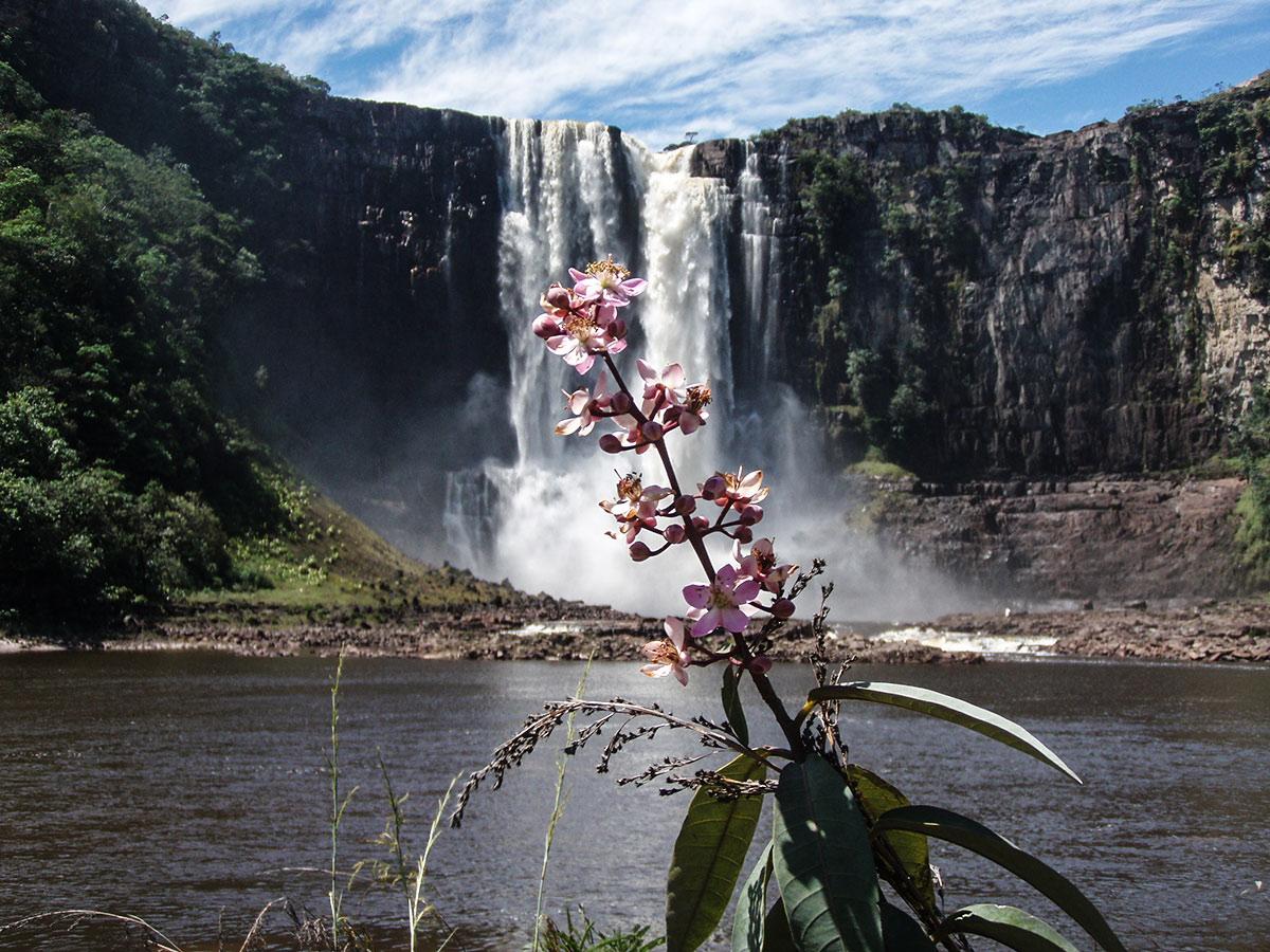 Туры в Венесуэлу, Гран Сабана, Канайма