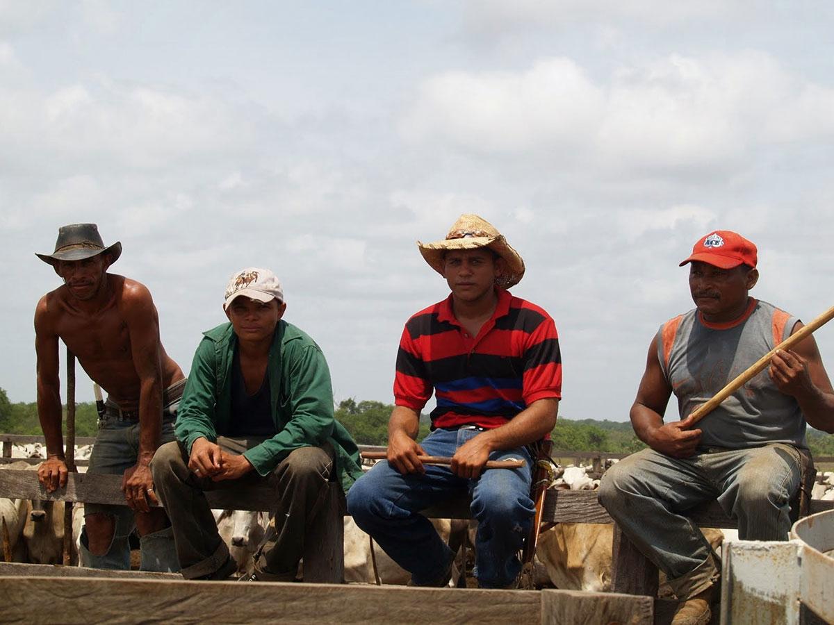 Туры в Венесуэлу, Лос Льянос